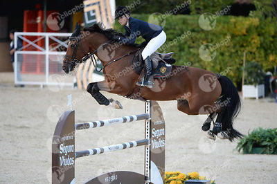 Edwina TOPS-ALEXANDER ,(AUS), HEIDI DU RUISSEAU Z during Longines Cup of the City of Barcelona competition at CSIO5* Barcelon...