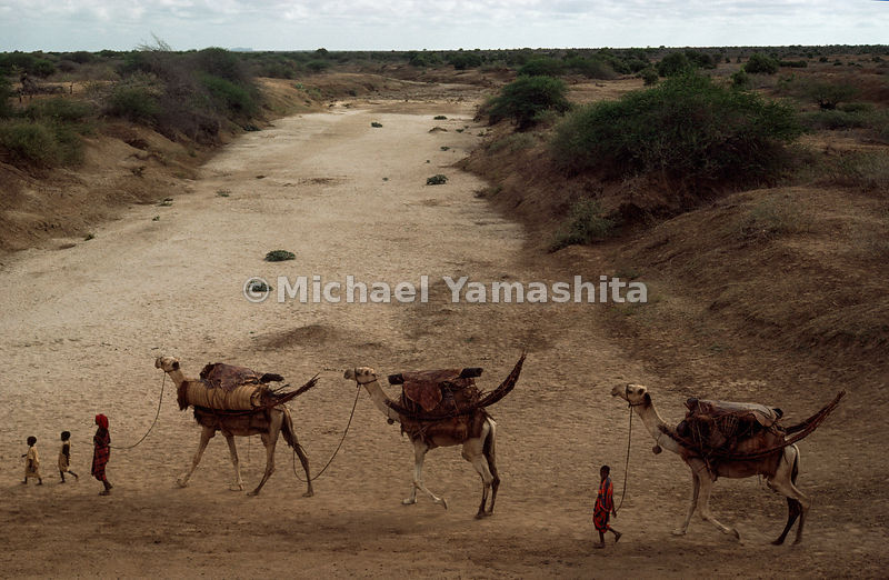 Endless quest for pasture and water defines the life still adhered to by most Somalis, such as this family crossing a dry riv...