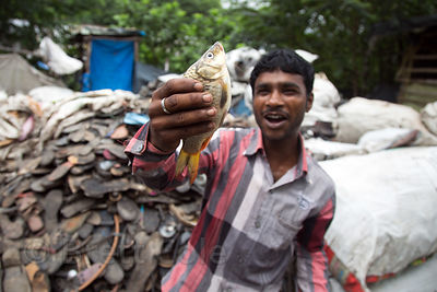 A man holds a small fish caught in a filty nearby creek at a rubber shoe recycling operation, Dhapa, Kolkata, India. Dhapa is...