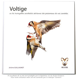 "My book ""Voltige"" now released (November 2013) photos"