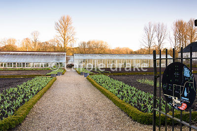 The kitchen garden at Forde Abbey in April with borders of tulips behind low box hedges