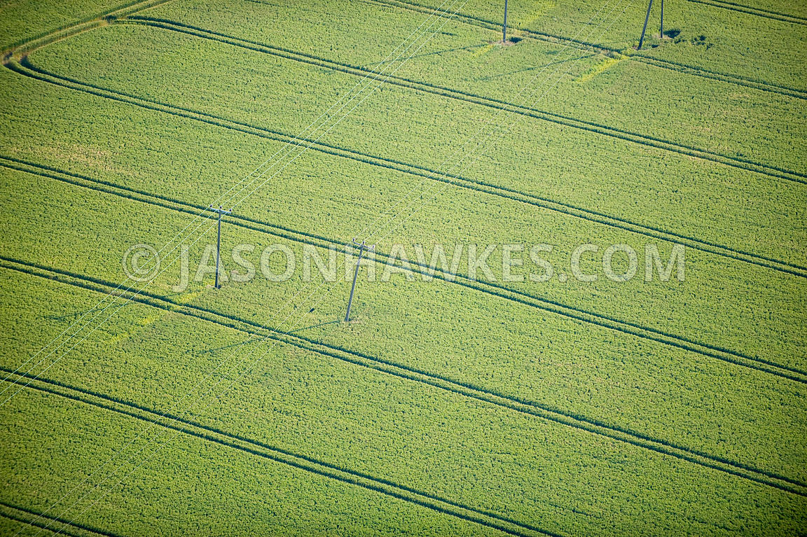Electric pylons in fields, Church Street, Kent