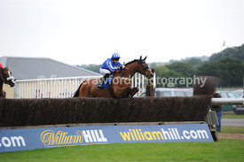 8.10pm The Handicap Steeple Chase (Class 4) - 25th June 2013