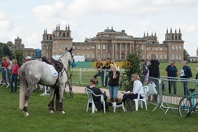 General views from Blenheim Palace International Horse Trials 2015