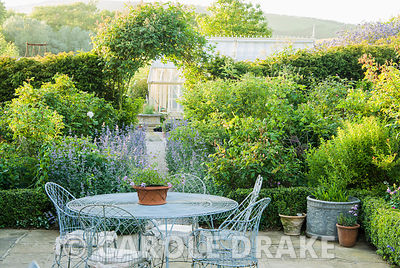 Decorative wirework chairs and table on the terrace outside the kitchen, with Nepeta 'Six Hills Giant' lining the path leadin...