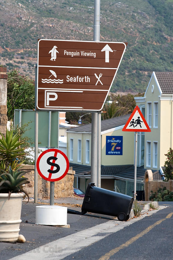 Unsecured garbage cans in Simon's Town, South Africa. Residents complain when local baboons come into the town, but do not do...