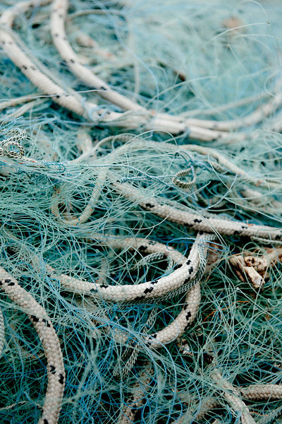 Fishing nets #2