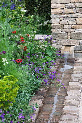 The Brewin Dolphin Garden at the RHS Chelsea Flower Show. Designer: Cleve West. Sponsor: Brewin Dolphin. © Rob Whitworth