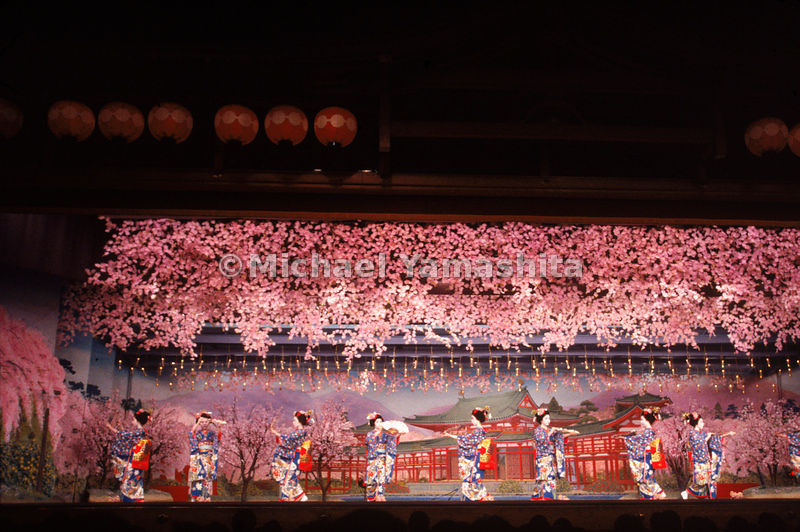 The Miyako Odori (Cherry Blossom Dance) is performed by eight maiko (apprentice geisha), at the Gion Kobu-Kaburenjo Theater i...