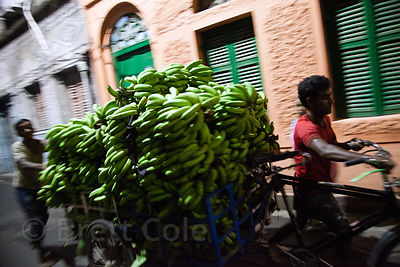 Bananas being driven to market by bicycle in Bowbazar, Kolkata, India.
