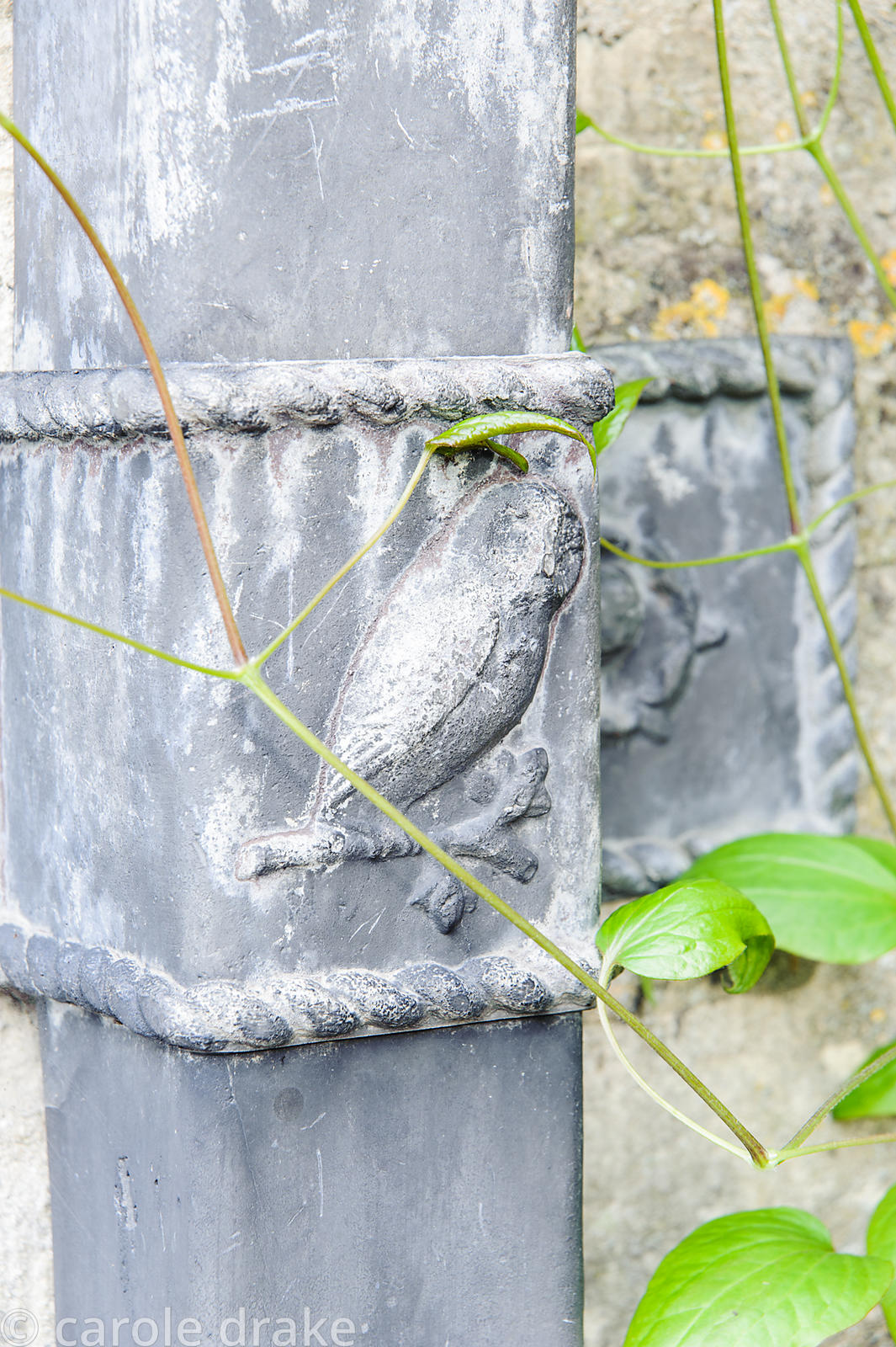 Decorative drain pipe with owl image. Rodmarton Manor, Rodmarton, Tetbury, Glos, UK