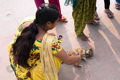A woman pets a tiny street dog puppy, Haridwar, India