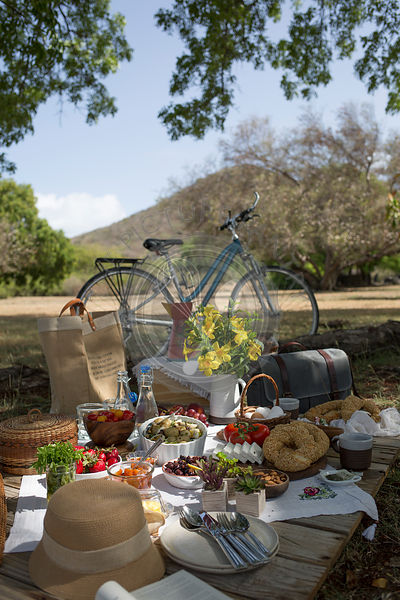 A picnic scene in the countryside, with a bike and fresh foods laid out