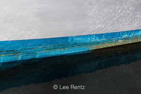 Blue Strip at Waterline Against White Hull in Newport, Oregon, Marina