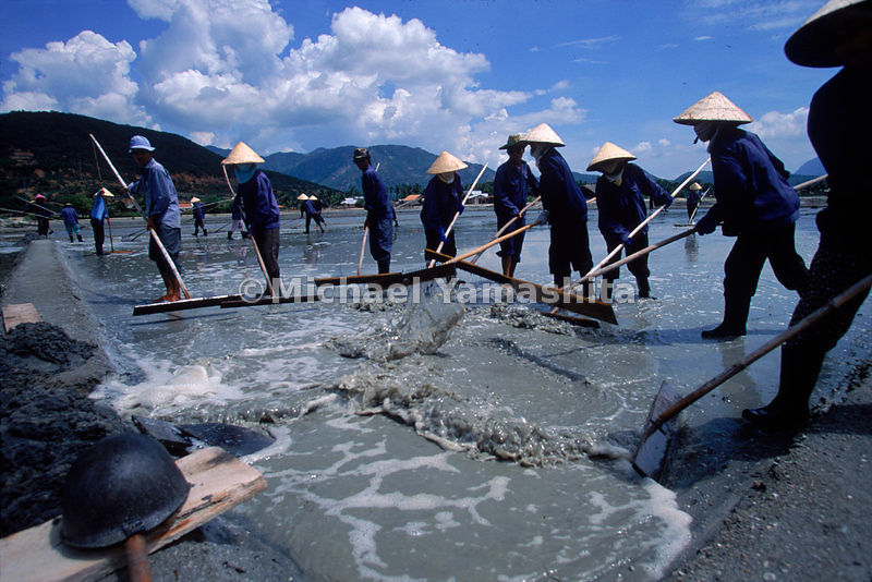 Emptying one pool after another, Vietnamese saltwork laborers finally get to the salt.