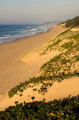 Beach, Maputaland, Kwazulu-Natal, South Africa