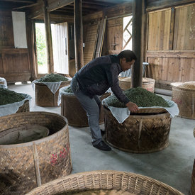 Old white tea factory