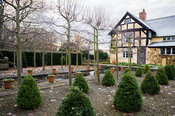 The Hildyard features 28 box cones set into gravel in front of the house with pleached lines separating it  from the Canal ga...