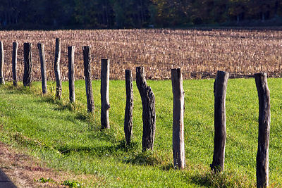 Rustic fence on a farm in the Adirondacks, New York