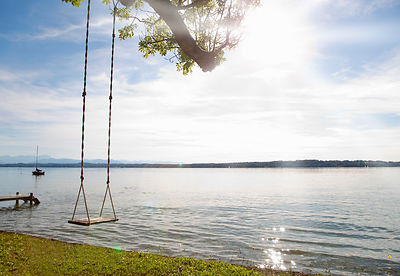 Empty tree swing by lake