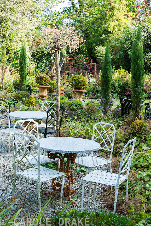 Tables and chairs on the terrace surrounded by Verbena bonariensis, Alchemilla mollis, clipped box and pencil cypresses, Cupr...