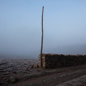 Pile of wood in the fog