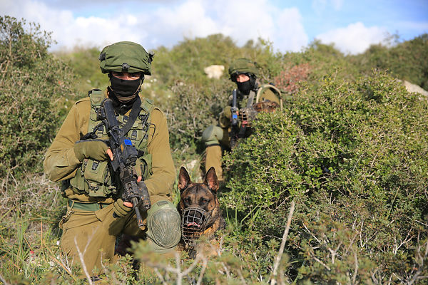 idf-reserve soldiers photos