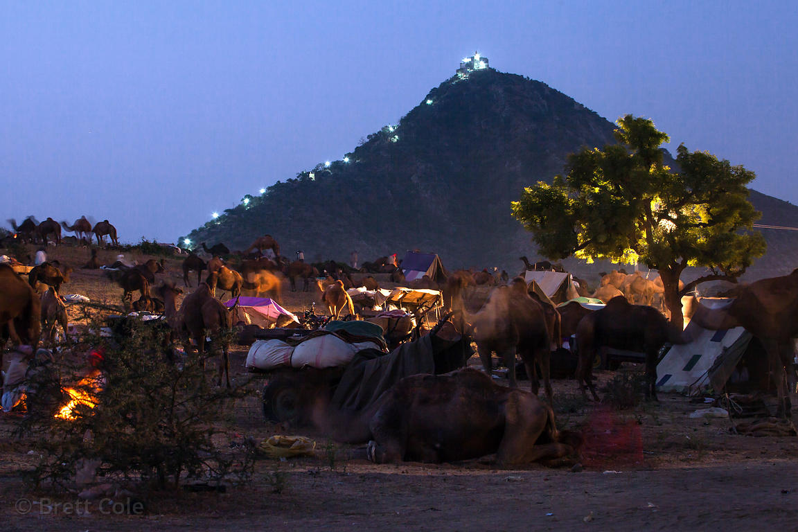View of Gayatri temple at night, Pushkar, Rajasthan, India.