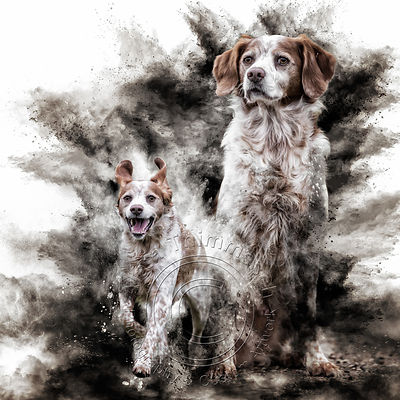 Art-Digital-Alain-Thimmesch-Chien-76