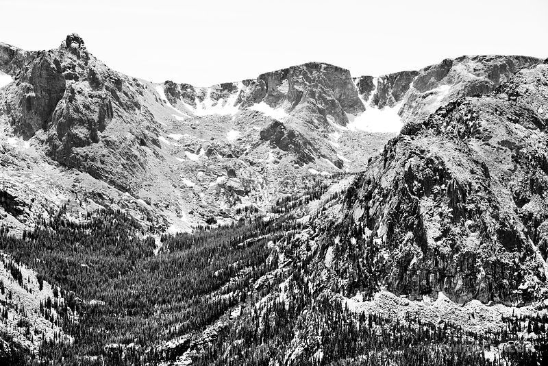 FOREST CANYON OVERLOOK ROCKY MOUNTAIN NATIONAL PARK COLORADO BLACK AND WHITE
