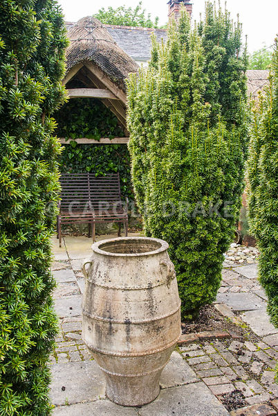 Large pithoi framed by four yews, Taxus baccata Aurea Group in the Thatched Garden. Caervallack Farm, St Martin, Helston, Cor...