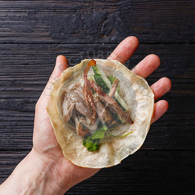 Peking Duck with cucumber, green onions and cilantro in roasted wheaten chinese pancakes in male hand close-up on black burned wooden background