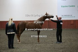 Classes 10, 11, 12 & Pure Bred Junior Femail Championship (1F)