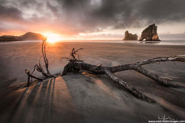 Wharariki beach, South island - New Zealand