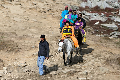 Indian tourists ride horses in rented snowsuits at Snow Point on Rohtang Pass, Manali, India