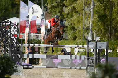 Paul ESTERMANN ,(SUI), LORD PEPSI during Longines Cup of the City of Barcelona competition at CSIO5* Barcelona at Real Club d...