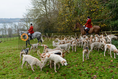 The Cottesmore Hunt at Hambleton 4/12