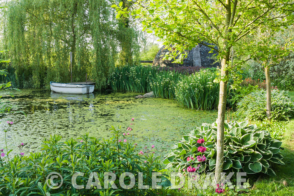 Lake edged with hostas, primulas and pale Iris pseudacorus var. bastardii contains small rowing boat below a weeping willow t...