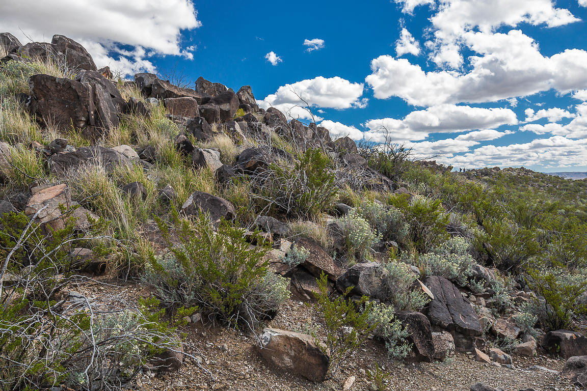 Typical Landscape at Three Rivers Petroglyph Site