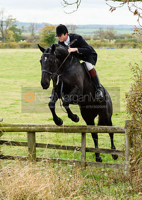 William Bell jumping onto Bruce's Lane. The Cottesmore Hunt at Somerby