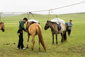 Local family and their horses in Gun-Galuut Nature Reserve, 130 km (81 mi) south-east of Ulaanbaatar, Mongolia.