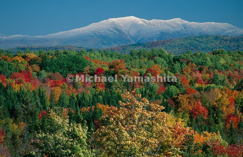 In October motley autumn invades the neighboring White Mountains.