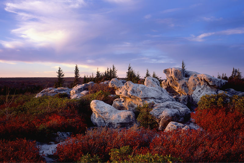 D105080_Dolly_Sods_WV_Preview