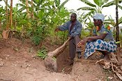 Woman farmer and adviser discussing irrigation ditches in Banana grove. Rwanda
