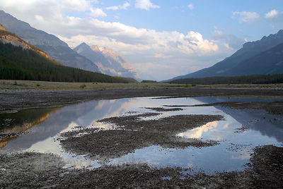 Reflections in pools along the Icefields Parkway. Banff NP, Canadian Rockies.