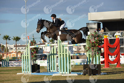 Aston Chloe (GBR) and CHICO