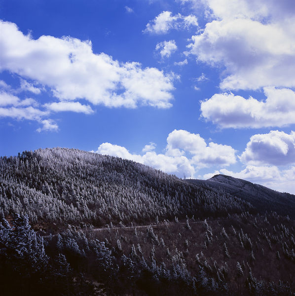 032-Blue_Ridge_D145210_Blue_Ridge_In_Early_Spring_-_Mount_Mitchell_Snowfall_008_Preview