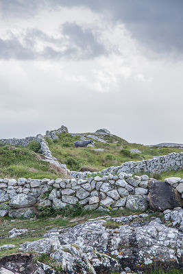 Stone walls and landscape,  Connemara, Ireland