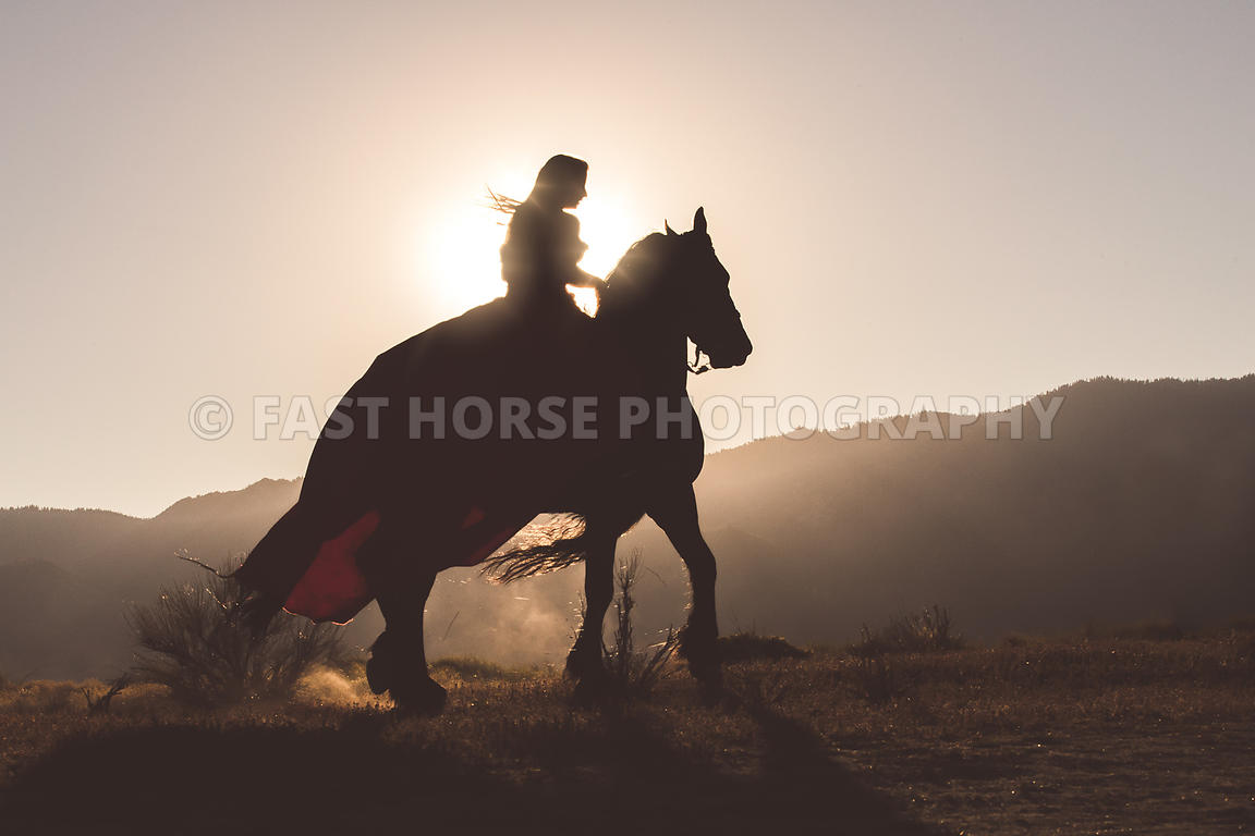 Fast Horse Photography A Woman Riding A Friesian Horse In A Long Dress Against A Nevada Sun