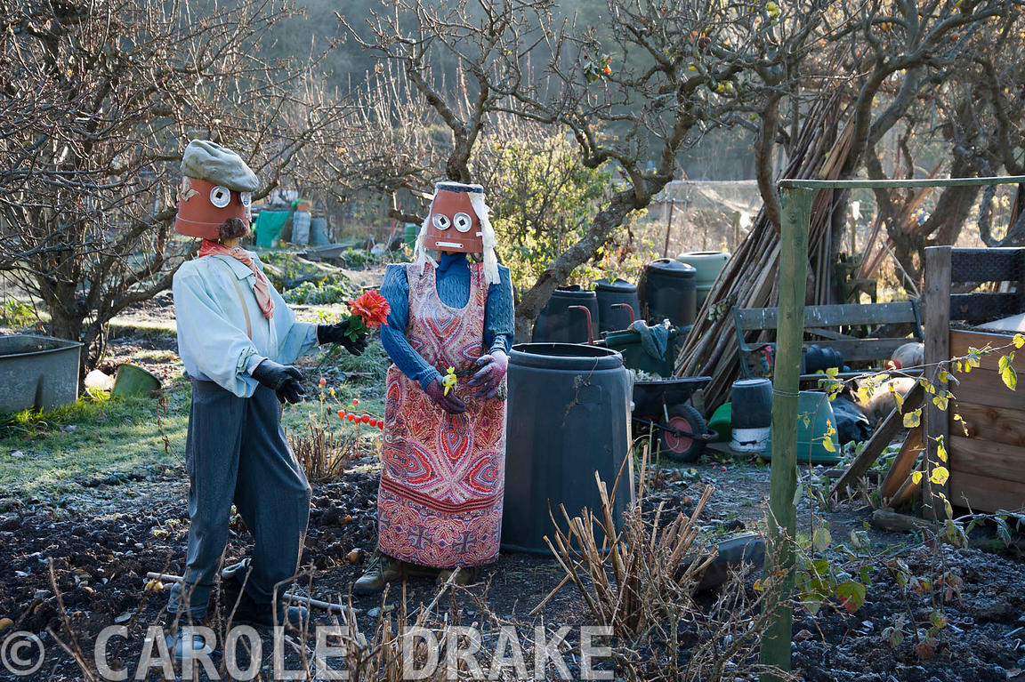 Community allotments with a scarecrow couple on a November morning at the Bishop's Palace garden, Wells